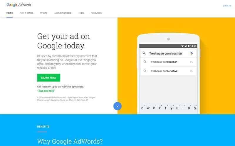 professional google ads management